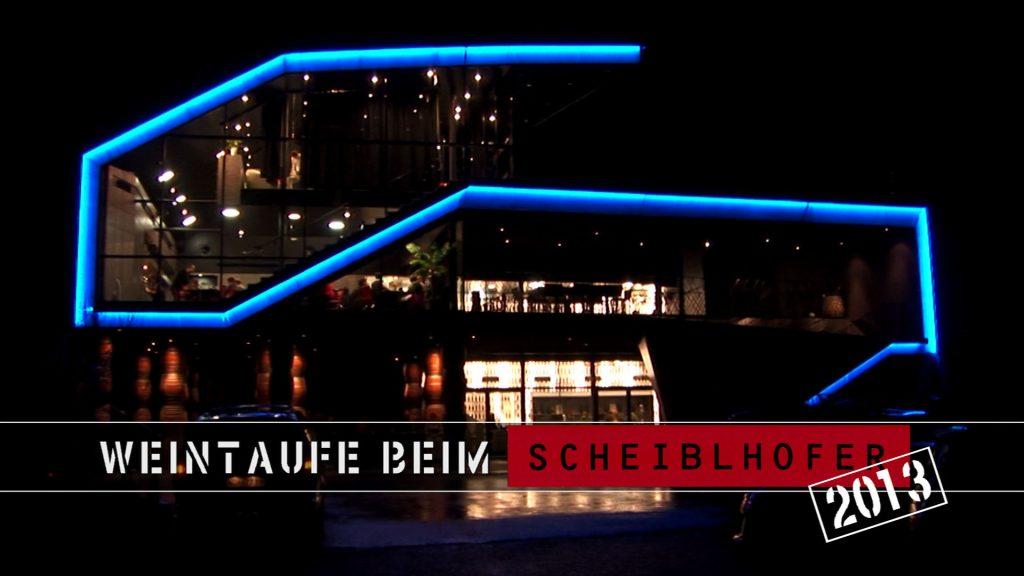 Beitrag Scheiblhofers 2013