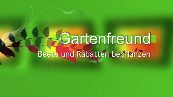 Beete und Rabatte bepflanzen