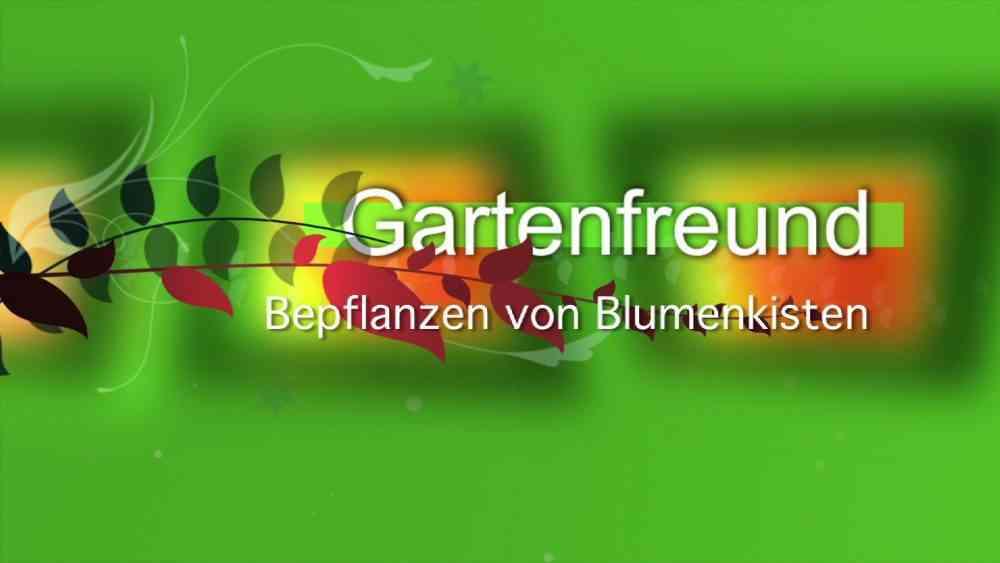 Bepflanzen von Blumenkisten