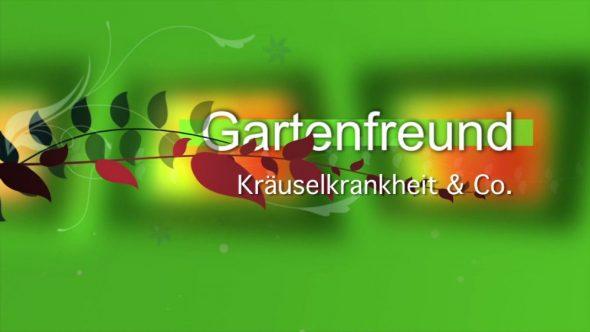 Kräuselkrankheit und Co.