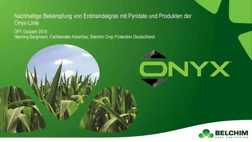 Onyx gegen Cyperus Bergmann ÖPT 2018_Seite_01
