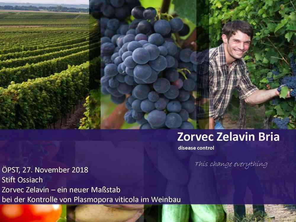 Zorvec Zelavin Bria