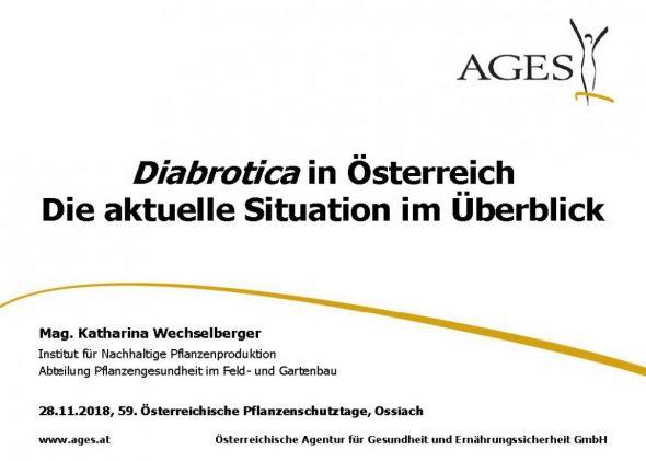 Diabrotica in Österreich