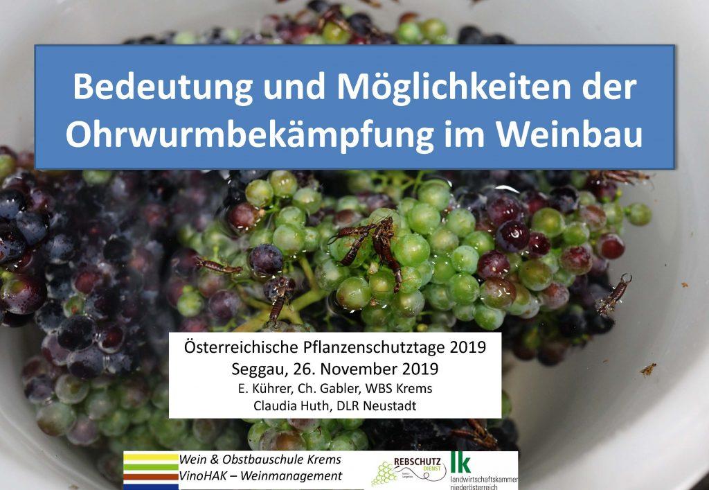 Bedeutung und Möglichkeiten der Ohrwurmbekämpfung im Weinbau_Seite_01