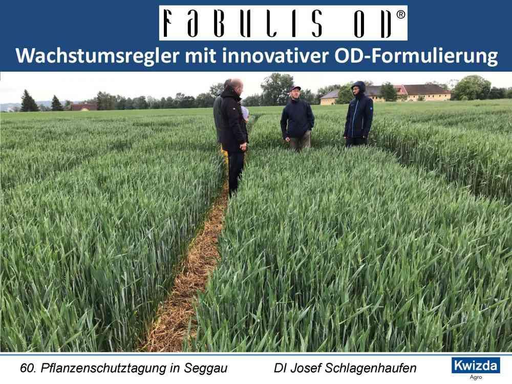 Fabulis OD_Seite_01