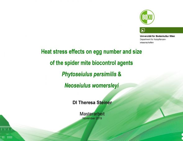 Heat stress effects on egg number and size of the spider mite biocontrol agents Phytoseiulus persimilis & Neoseiulus womersleyi