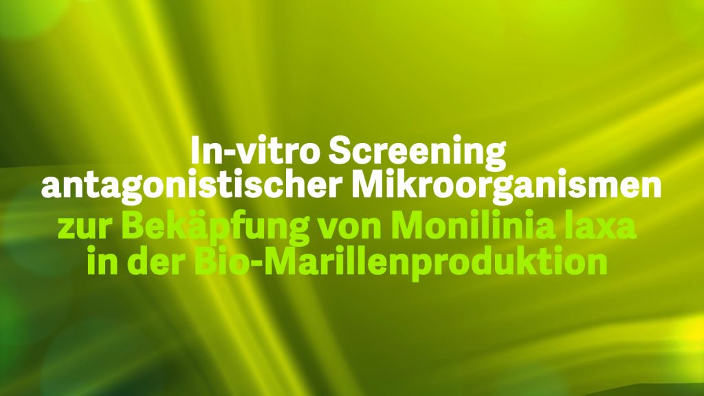 1-3 In vitro screening of antagonistic microorganisms