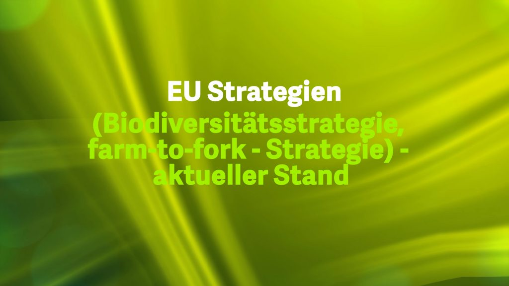 3 EU-Strategien