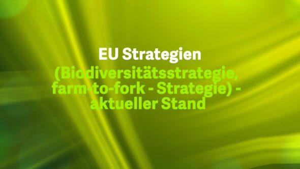 EU Strategien – aktueller Stand