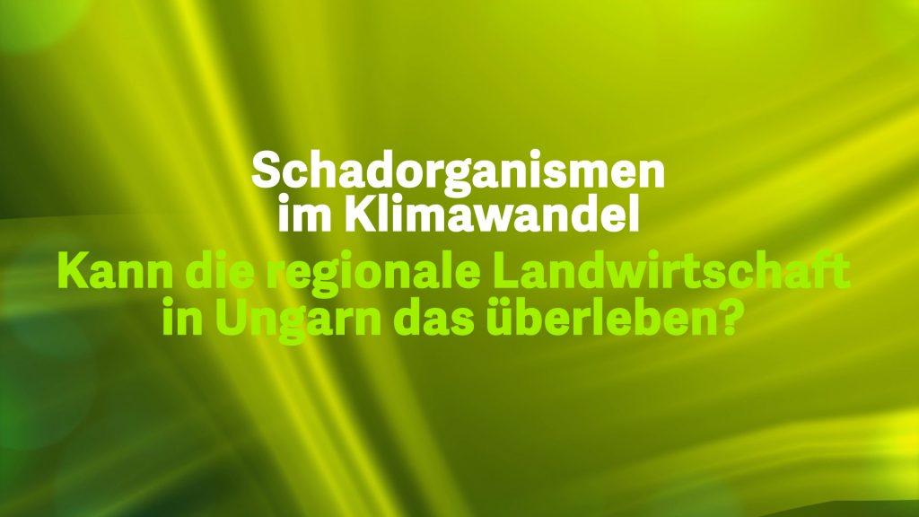 5 Schadorganissmen im Klimawandel – Ungarn