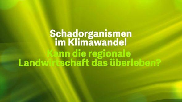 Schadorganismen im Klimawandel 2