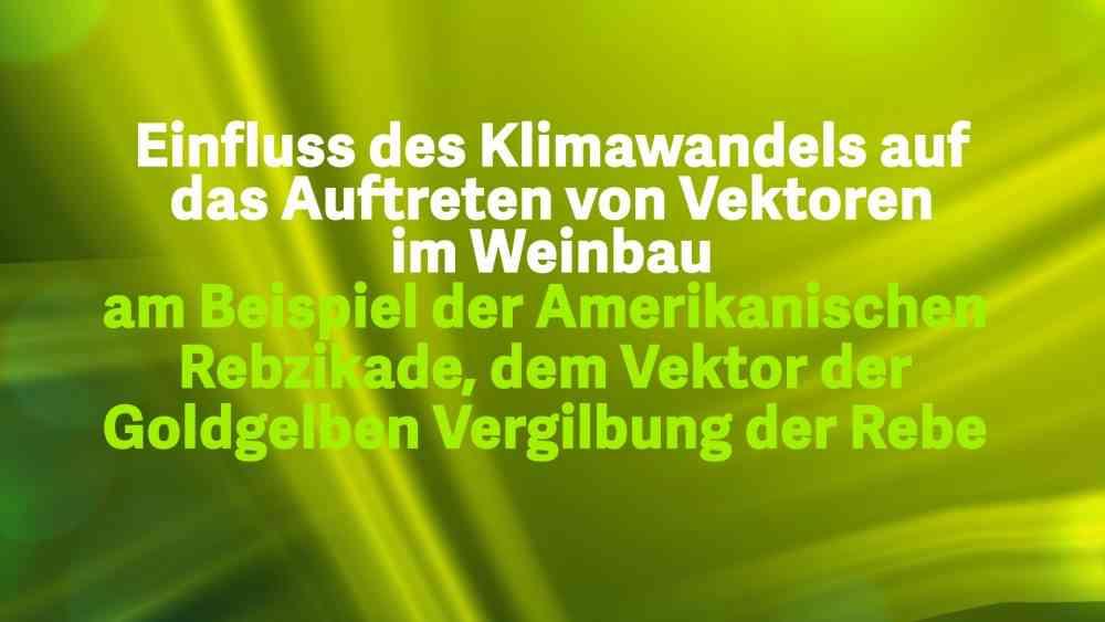 Read more about the article Einfluss des Klimawandels im Weinbau