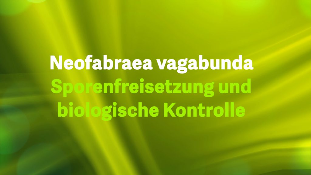 Neofabraea vagabunda