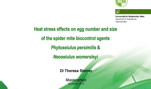 Heat stress effects on egg number and size_Seite_01