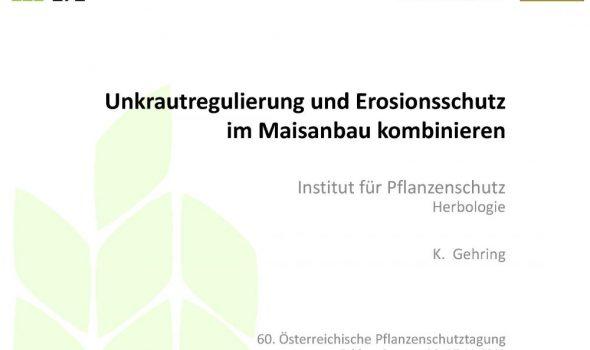 Unkrautregulierung und Erosionsschutzim Maisanbau kombinieren_Seite_01