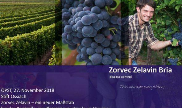 Vortrag Zorvec Ossiach_Seite_01