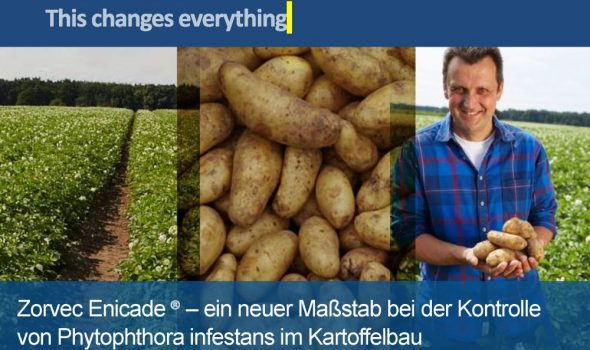 ZORVEC_Kartoffel_Ossiach_2018_Seite_01